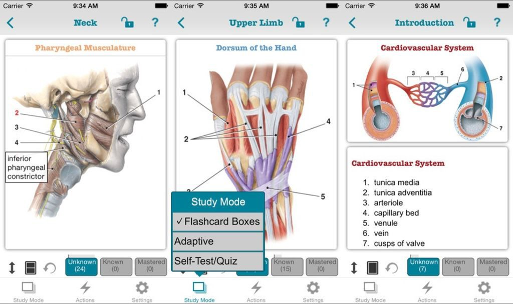 The Best iPhone Apps for Anatomy Students | Appolicious mobile apps
